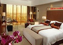 东莞市帝豪花园酒店有限公司豪华园景大床房