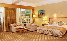 珠海德翰大酒店有限公司豪华山景大床房